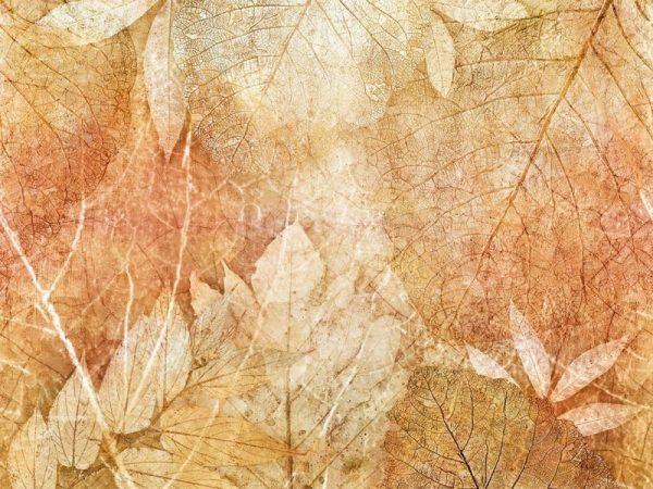 Фото фрески Affresco New Art RE204-COL2