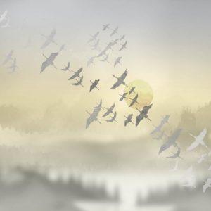Фото фрески Affresco Trend Art ZK444-COL4