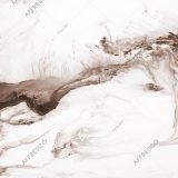 Фото фрески Affresco Fine Art RE805-COL3