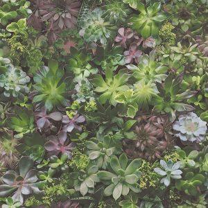 Фото обоев Aura Evergreen арт.7322