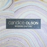 Candice Olson Modern Nature