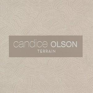 Candice Olson Terrain